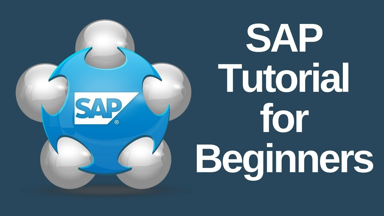 What Does Sap Stand For Tutorial Free Online Training Course Software Mm Material Management